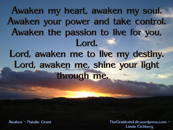 Awaken-The-Gratitude-Life-photo-copyright-Linda-Eichberg